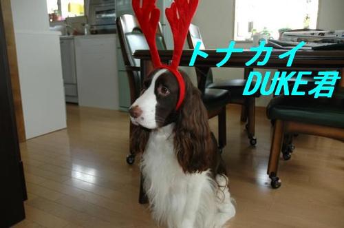 Dsc_0029_convert_20111108234221