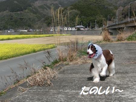 Photo_50